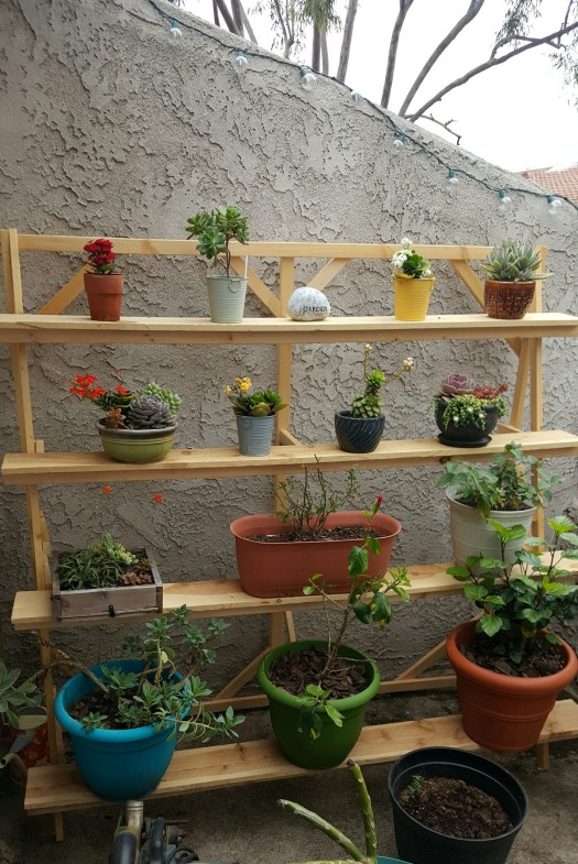 gardening shelf